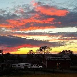 Mark Victors - Horse Farm Story