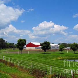 Tina M Wenger - Horse Farm