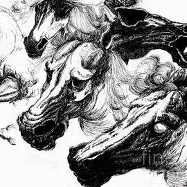 Daliana Pacuraru - Horse ink drawing