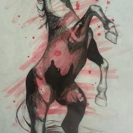 Karen Cassels - Horse