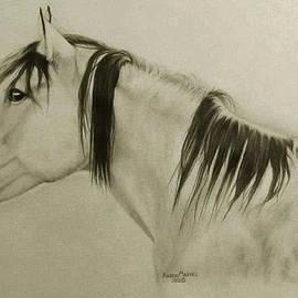 Karen E Marvel - Horse