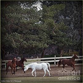 Bobbee Rickard - Horse Play 3