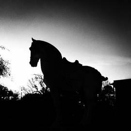 Cassandra Eisan - Horse Statue :)