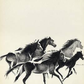 Mamoun Sakkal - Horses