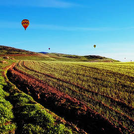 Glenn McCarthy - Hot Air Balloons On A Golden Afternoon