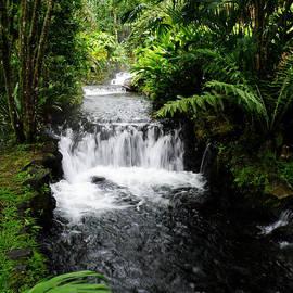 DejaVu Designs - Hot Springs Waterfall in Costa Rica