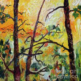 Ginette Callaway - Hot Summer Sunset Through The Pines