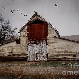 Janice Rae Pariza - Hotchkiss Colorado Barn