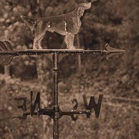 Dan Sproul - Hound Dog Weather Vane