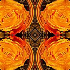 Sarah Loft - House of Roses