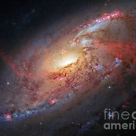 David Lawrence - Hubble view of M 106 - Untitled