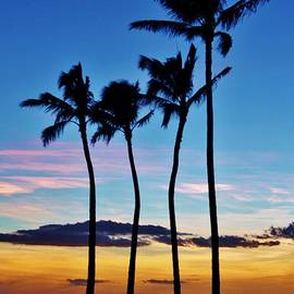 Craig Wood - Hula Palms at Sunset