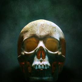 Carlos Caetano - Human Skull
