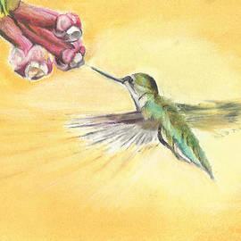 Tristan Roberts - Humming Bird