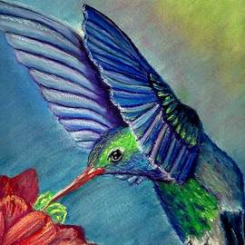 Jay Johnston - Hummingbird and Flower