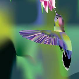Arline Wagner - Hummingbird
