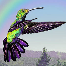 Michele  Avanti - Hummingbird In Flight