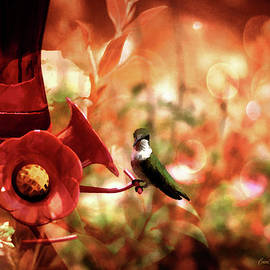 EricaMaxine  Price - Hummingbird in the Painted Garden