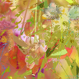 Dorothy  Pugh - Hummingbird Jazz