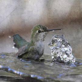 Angie Vogel - Hummingbird Spa
