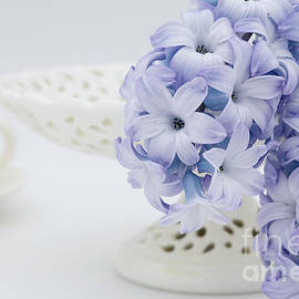 Ann Garrett - Hyacinth