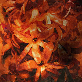 EricaMaxine  Price - Hyacinth - Featured in Visions of the Night and Comfortable Art Groups