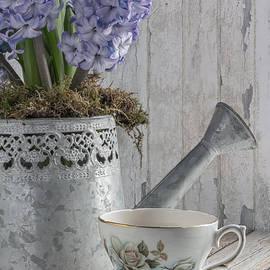 Ann Garrett - Hyacinth Teatime