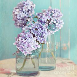 Sylvia Cook - Hydrangeas in mason jars