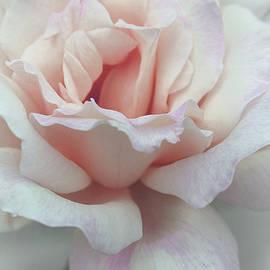 The Art Of Marilyn Ridoutt-Greene - I Dream of Roses