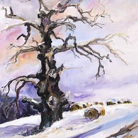 Barbara Pommerenke - I Have Got Stories To Tell Old Oak Tree In Mecklenburg Germany