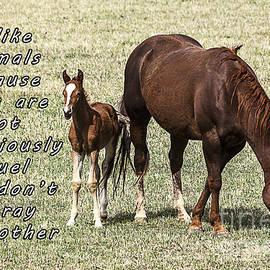 Janice Rae Pariza - I Love Animals