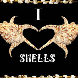 Enrique Amat - I Love Shells