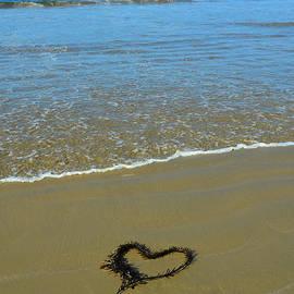 Debra Thompson - I Love The Beach