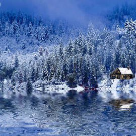Diane Schuster - I Loved You In Winter