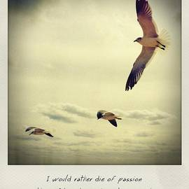 Bradley R Youngberg - I Would Rather Die Of Passion Than Of Boredom - Vincent Van Gogh Polaroid