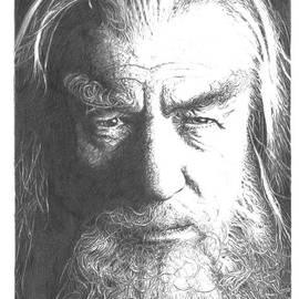 Yana Wolanski - Ian Mckellen as Gandalf