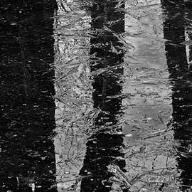 Karol  Livote - Ice Abstract