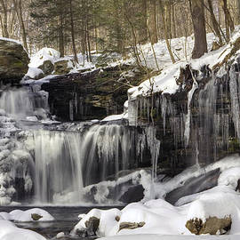 Gene Walls - Icicles Decorate R. B. Ricketts Waterfall