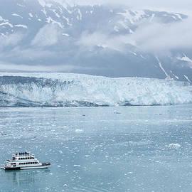 Zina Zinchik - Icy cruise
