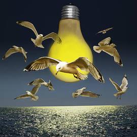 Randall Nyhof - Ideas Take Flight