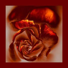Li   van Saathoff - If a rose is a rose