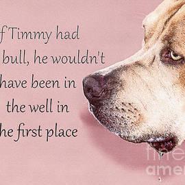 Janice Rae Pariza - If Timmy Had A Pitbull