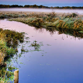 Roger Passman - Illinois Marsh at Dawn