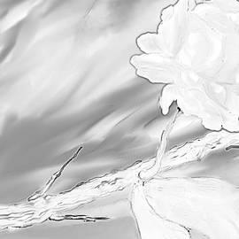Nicla Rossini - Immortal Love