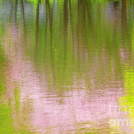 Charline Xia - Impression of Pink and Green