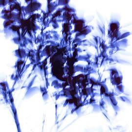 Iris Lehnhardt - Impressionist leaves indigo