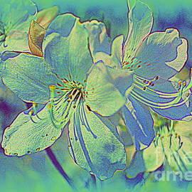 Photographic Art and Design by Dora Sofia Caputo - Impressionistic Blue Blossoms