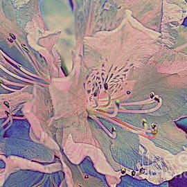 Photographic Art and Design by Dora Sofia Caputo - Impressionistic Spring Blossoms