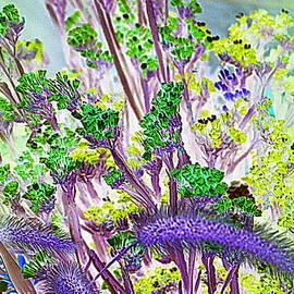 Photographic Art and Design by Dora Sofia Caputo - Impressionistic Summer Blossoms