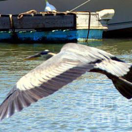 Sue Rosen - In flight